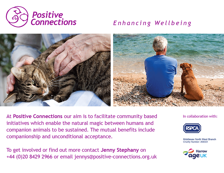 Positive Connections - enhancing wellbeing in partnership with companion animals